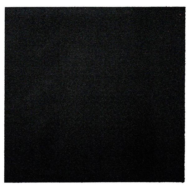 Black carpet gallery of with black carpet beautiful for Black wall to wall carpet